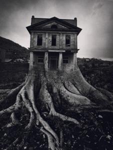 Ju_tree_house